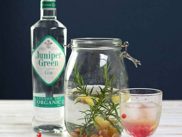 infused cocktail recipes rosemary and lemon gin