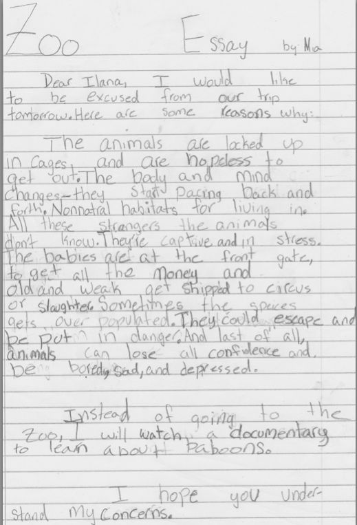 essay on animals behind bars