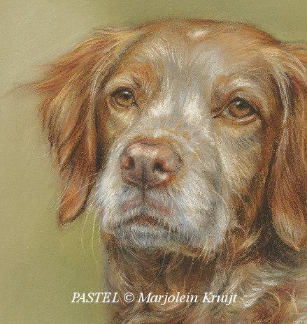 Marjolein Kruijt vervaardigt dierportretten in olieverf, aquarel, pastel, houtskool en potlood. Bekijk alle technieken en close-ups van portretten hier.