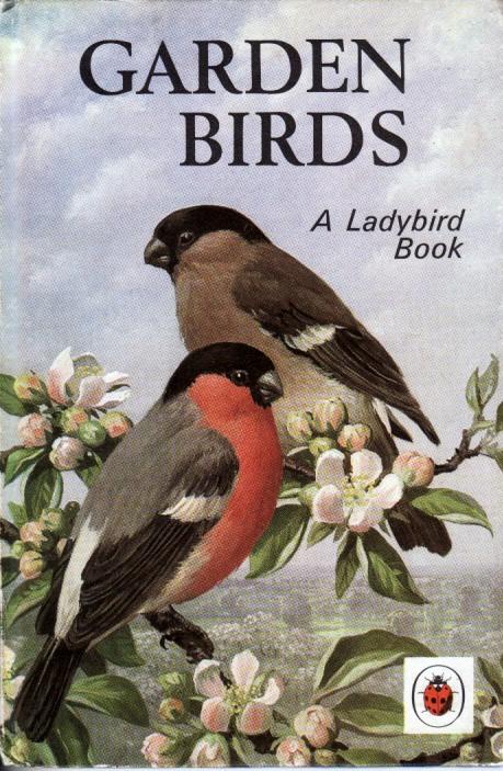 Garden Birds 1970s Ladybird Book