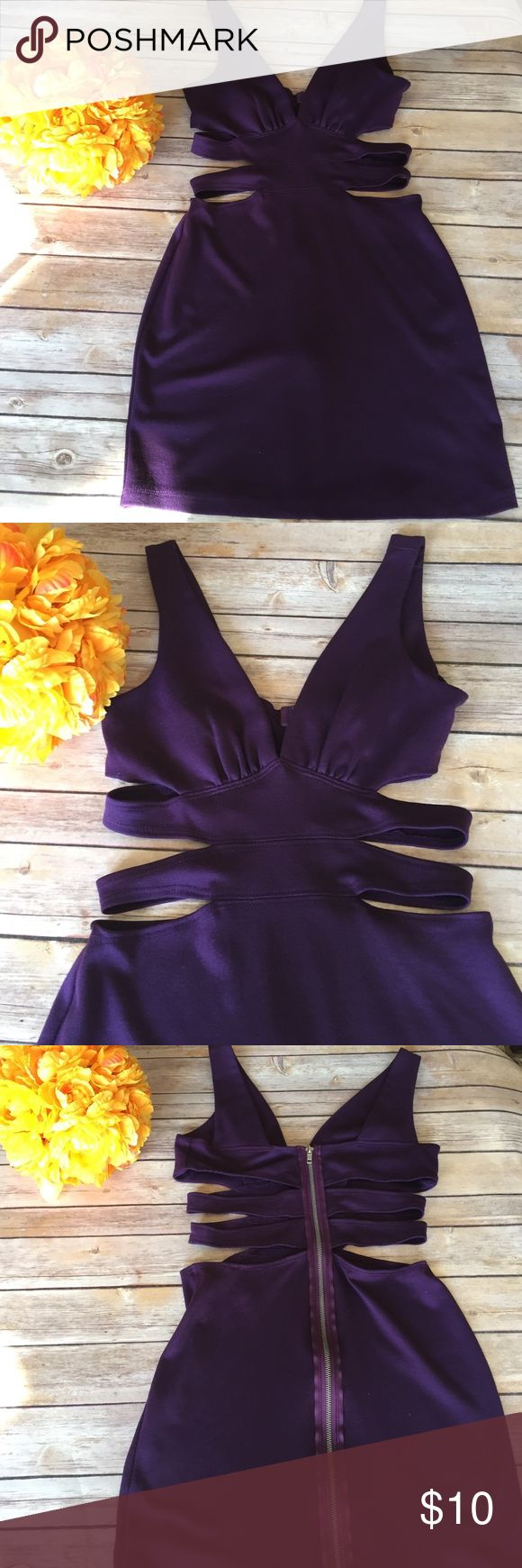 🍇Grape Shark mini dress This rich purple mini dress has lots of detail.  V-Neck, Cut out sides and a zipper down the back.  Super fun and cute. April Dresses Mini