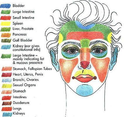 #Reflexology Face Chart Facial Reflexology taught by the Universal College of Reflexology - part of UCR's post graduate Diploma program. www.iReflexology.com