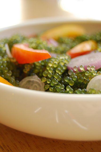 Ensaladang Lato (Seaweed Salad) | http://www.80breakfasts.blogspot.com/2011/02/ensaladang-lato-seaweed-salad.html