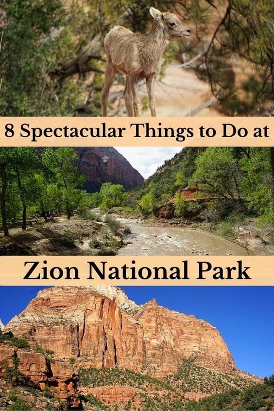 8 Spectacular Things to Do at Zion National Park, Utah