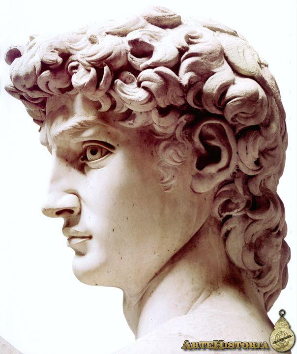 MIGUEL ANGEL. David. 1502