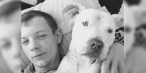 Please sign and share Roxie was seized under Breed Specific Legislation which judges dogs based on looks not behaviour. Her life is now at risk! (1763 signatures on petition)