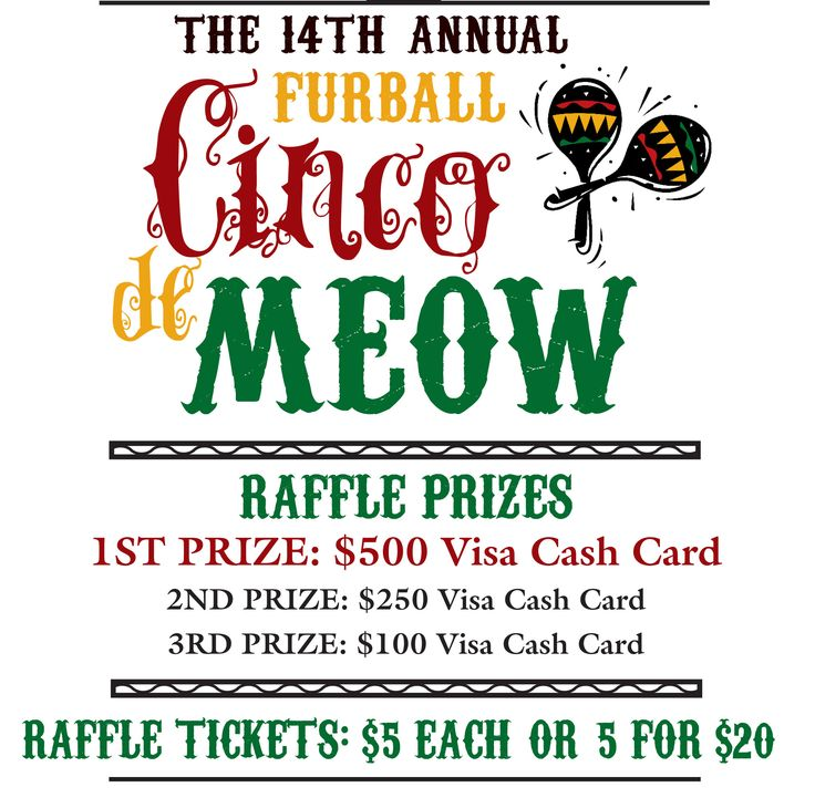 Fun Raffle Flyer - How cute is this fundraising idea? The 14th Annual Furball Cinco de Meow fundraiser and raffle. The more fun you can make your event, the more people will come. And prepaid Visa gift cards are great raffle prizes to offer.