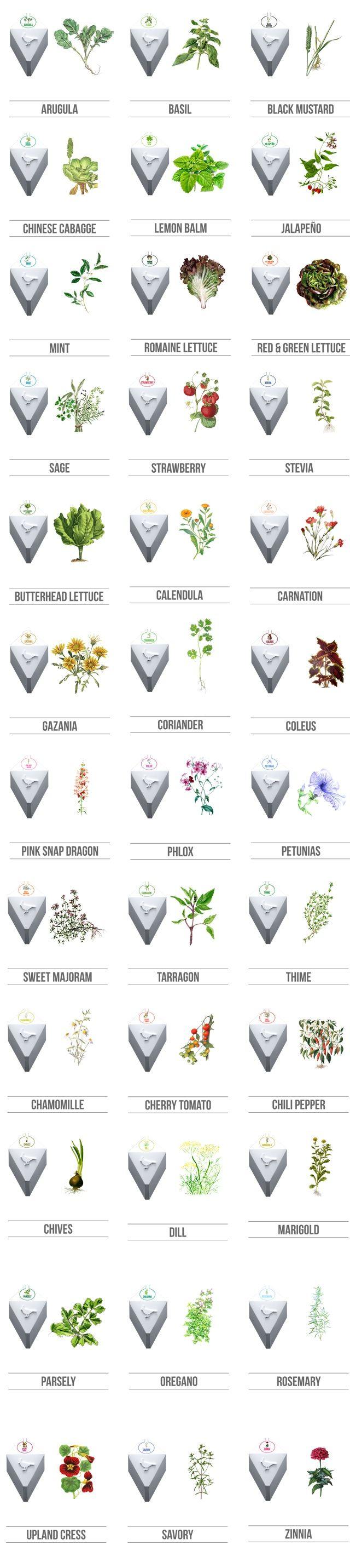 Plug & Plant Smart Vertical Garden by Team Plug & Plant — Kickstarter