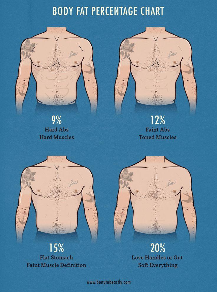 body fat percentage picture guide