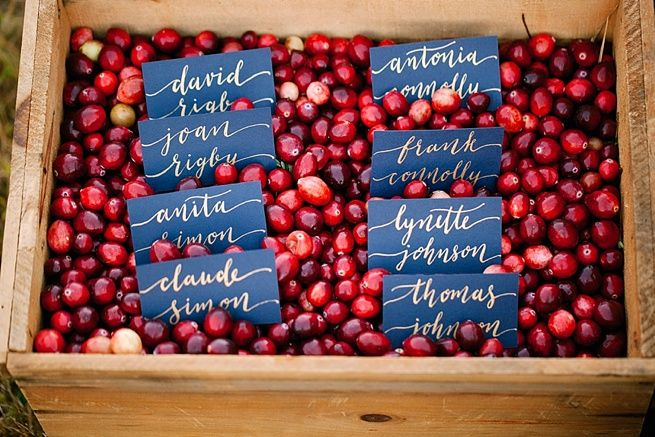 Cranberry Fall Wedding Style Inspiration | Calligraphy by HOOKED Calligraphy | Photo Credit: Whitney Furst Photography | Minneapolis MN | calligraphy, modern calligraphy, berry wedding ideas, moody wedding, fall wedding, outdoor wedding, elopement, navy, brass accents, ruby red, cranberry, gold ink calligraphy