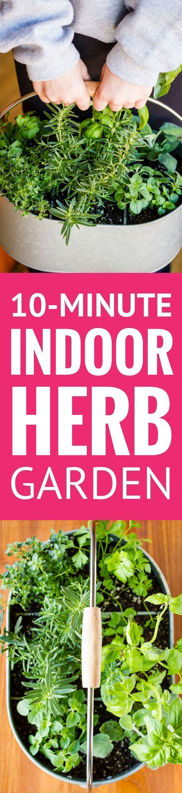 Easy Indoor Herb Garden -- I was an indoor container gardening failure, until I decided a different approach was in order. Find out how you can create this simple DIY indoor herb garden in under 10 minutes! | diy indoor herb garden | indoor herb garden ideas | indoor herb garden for beginners | indoor herb garden containers | find the tutorial on unsophisticook.com #herbgarden #indoorplants #containergardening #herbs #containergardeningforbeginners #containergardeningdiy #diygardening