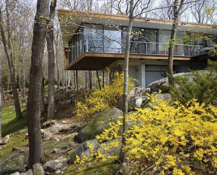Modern Renovated Forest House Design In Armonk, New York (1)