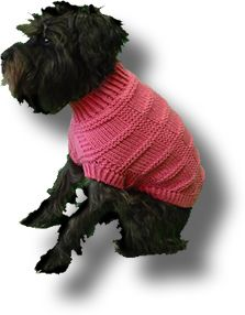 Pets on pinterest dog sweaters crochet dog sweater and free dogs