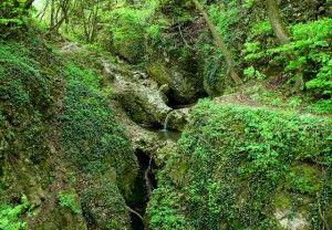Cseszneki Kőmosó-szurdok