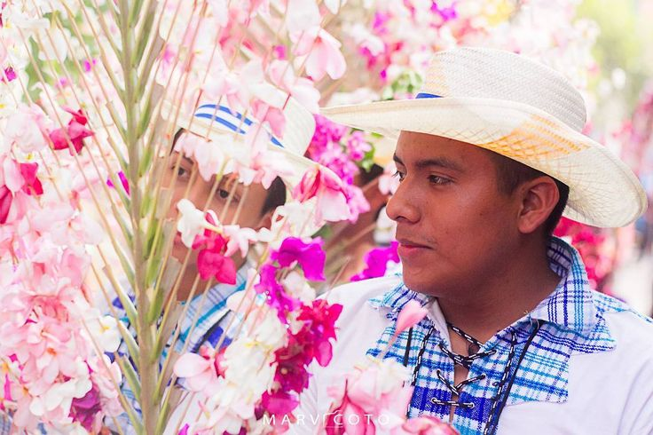 Festival de Palmas y Flores - Panchimalco.  #panchimalco #flores #flowers #color #colorful #bestoftheday #picoftheday #photooftheday #photojournalism #best #instadaily #exposure #smile #happy #travel #visiting #instatravel #trip #holiday #igtravel #art #artoftheday #elsalvador #elsalvadortravel http://tipsrazzi.com/ipost/1517101185062963685/?code=BUN031oAInl