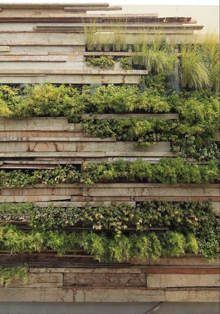 living art landscaped wall using stones, horizontal lines, tiles,plants, abstract art, plant installation, plant wall art