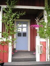 juhannuskoivut - midsummer's birches. Old tradition to place koivu birches beside the door