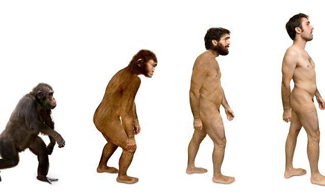 Turkey to stop teaching Darwin's theory of evolution in high schools