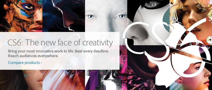 Adobe Creative Suite family - http://www.adobe.com/products/creativesuite.html