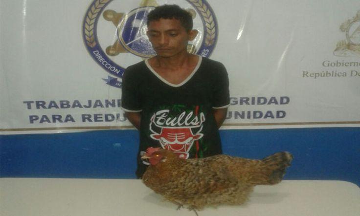 De 'alto impacto': Arrestan a José Ricardo Álvarez por robarse una gallina