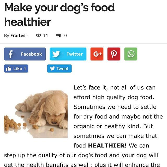 Not all of us can afford high quality dog food, but we can sure boost it up. We would be making it healthier, yummy and with extra health benefits!