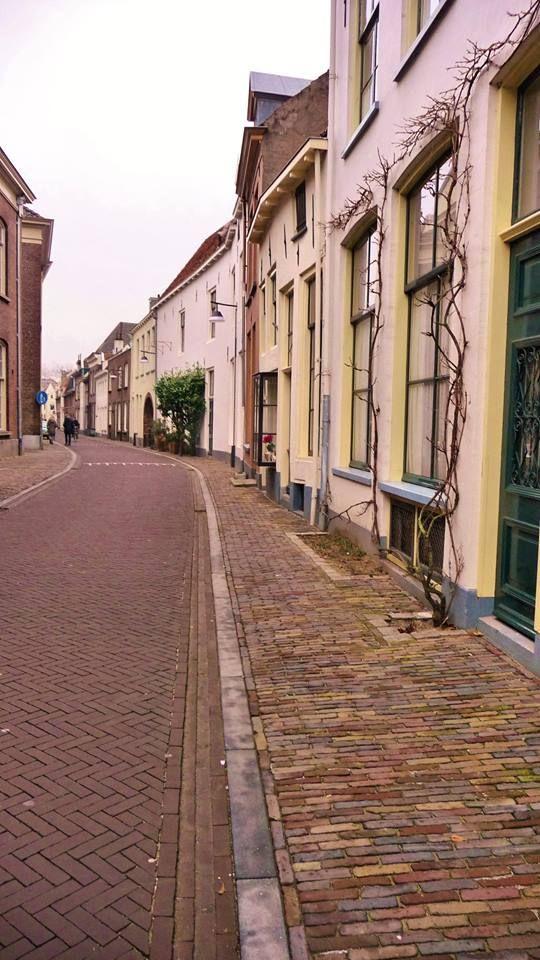 Bornhovestraat