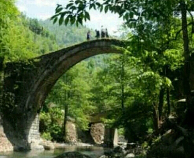 Bridge-Suadiye köprüsü-Güreşen village-Borcka-Artvin