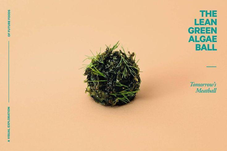Large 02 algaeball  c  lukas renlund