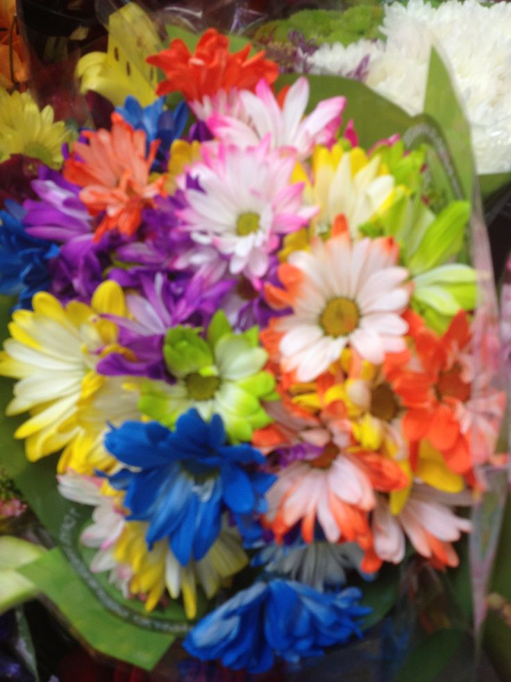 Grocery Store Wedding Flowers Grocery Store Sam 39 S Club Bouquet Blue And Other Colorful Flowers