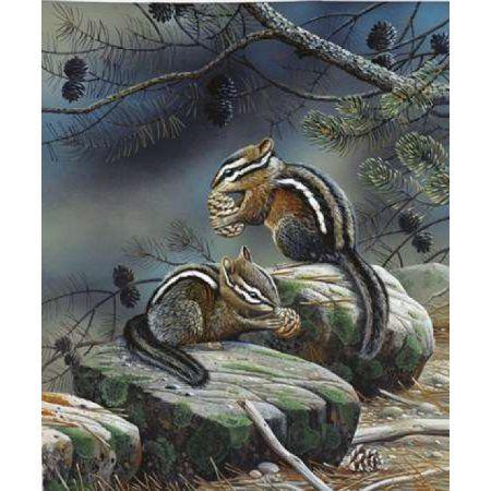 Squirrels Canvas Art - Jan Weenink (20 x 24)