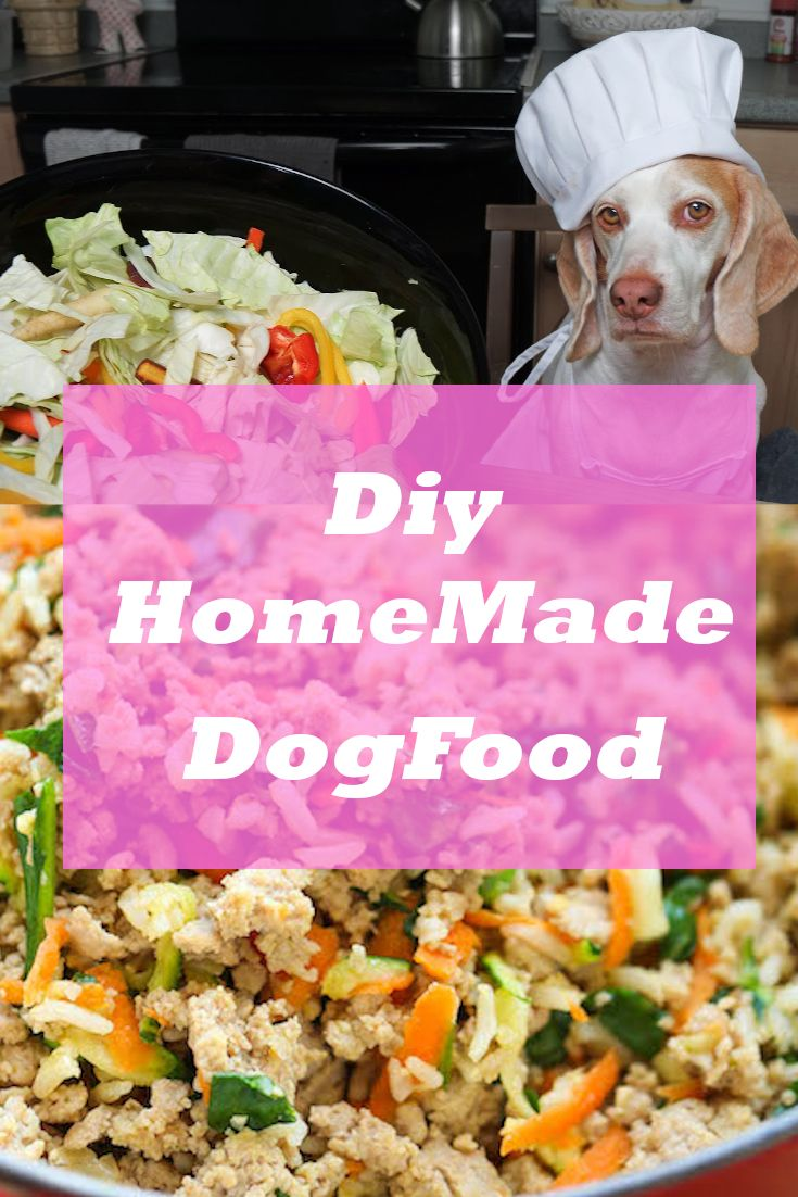 Best Homemade Dog Food Recipes That Are Vet Approved Your Dog