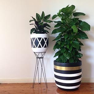 Design Twins Painted Plant Pots Indoor Plant Pots