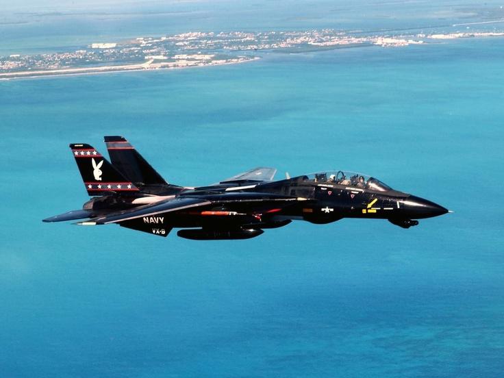A shiny black F-14 Tomcat