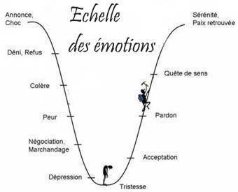 Echelle des émotions.