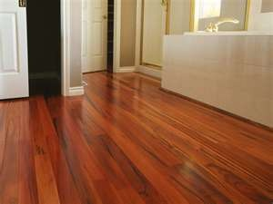 Tiger-Wood FlooringBamboo Bathroom, Tiger Woods, House Ideas, Tigerwood Hardwood, Hardwood Floors, Bathroom Remodeling, Floors Ideas, Bathroom Ideas, Tigers Wood