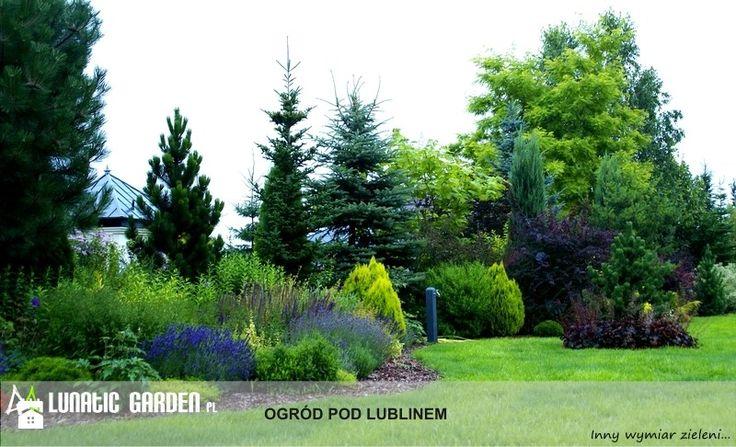 Ogród Ogród - zdjęcie od Lunatic Garden