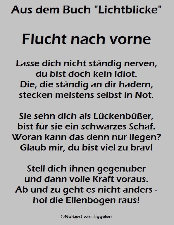 """Buchtitel: """"Lichtblicke"""" Autor: Norbert van Tiggelen"""