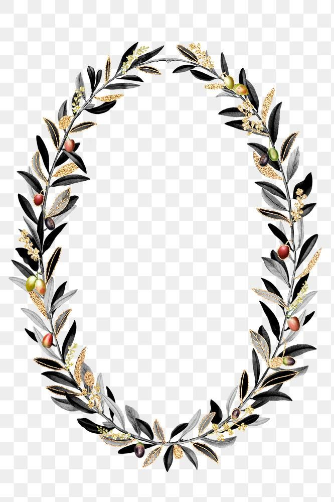 Olive Branches Wreath Png Black Botanical Premium Image By Rawpixel Com Noon Olive Branch Wreath Wreath Drawing Olive Branch