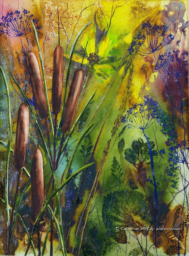 """'Tails' of the Swamp. Watercolour 12"""" x 16"""" by Catherine McCoy"""