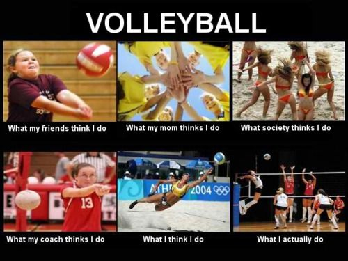 volleyball humor - Google Search
