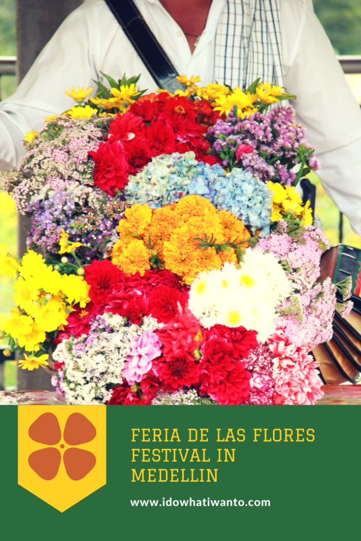 Visiting the biggest festival in Medellin, Feria de las Flores is all about colour! Colombia