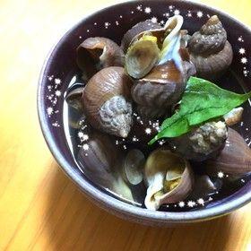 レシピ つぶ 貝 ツブガイの捌き方 つぶ貝を刺身で食べましょう!!
