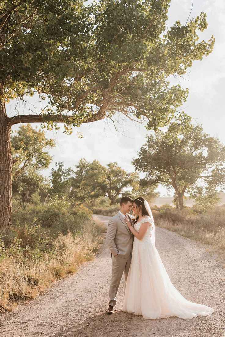 Wedding Inspo   Ballgown Bridal Gowns — Alicia Lucia Photography ...