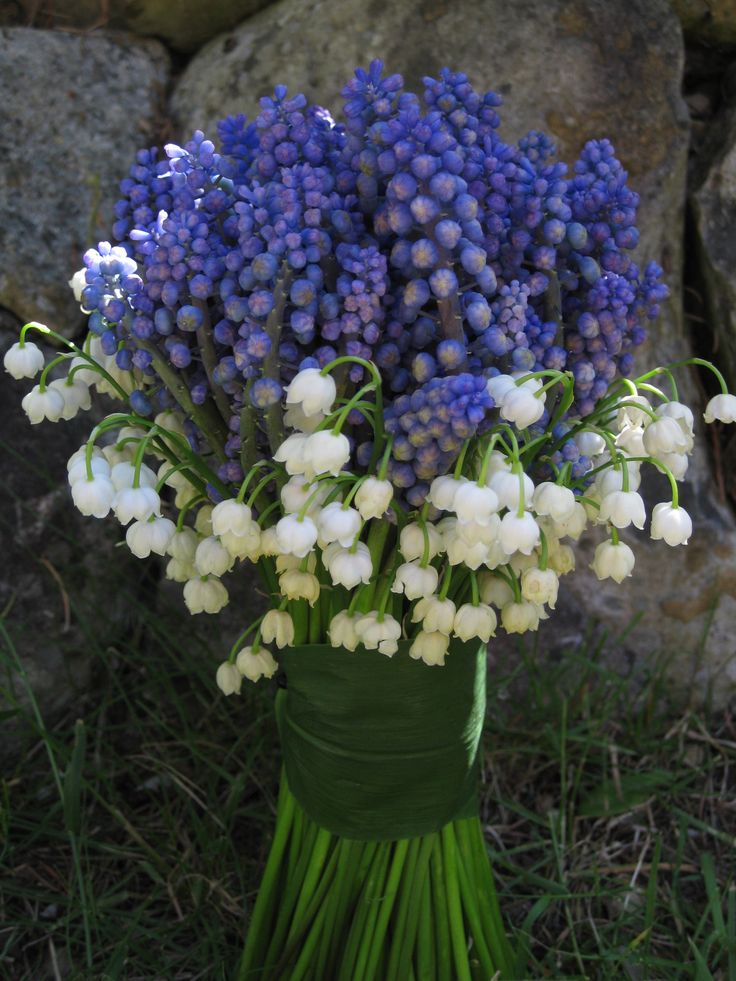 Garden Party Flowers/Seattle and Bainbridge Island designed this bouquet with muscari and lily of the valley.