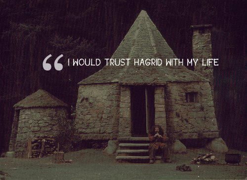 """I would trust Hagrid with my life"""