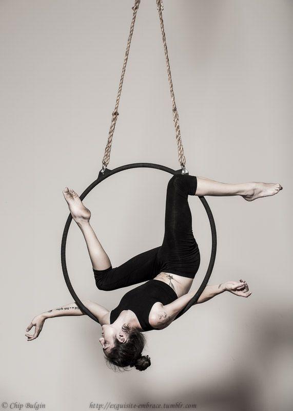 cirque renard: Photo