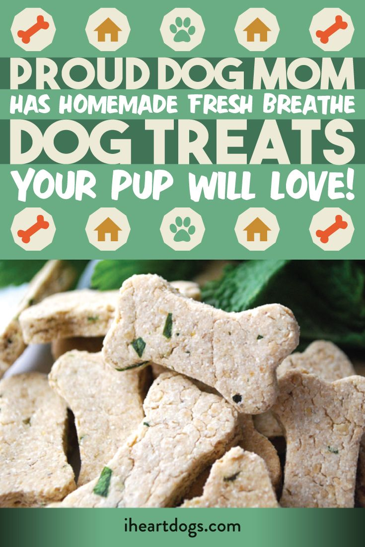 Yummy treats from ProudDogMom are good for dogs- and dog breath!