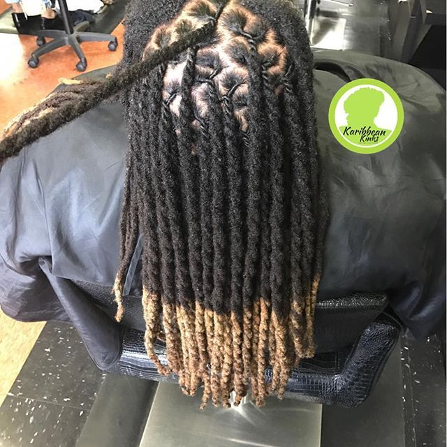 2 Strand Twist Locs Colored Tips Dreadlock Hairstyles