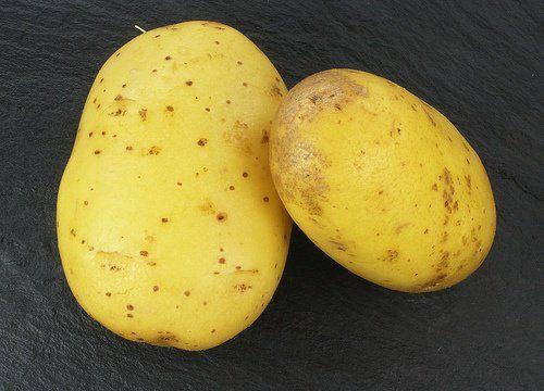 Proprietes-du-jus-de-pomme-de-terre-crue-500x360