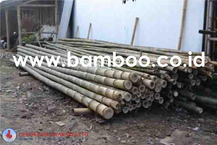 Bamboo Pole - 04